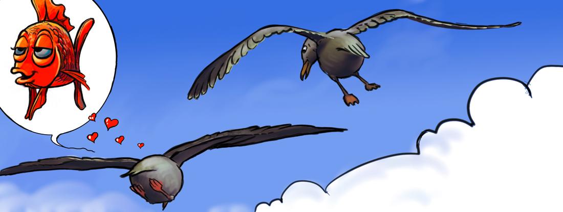 5-oiseaux